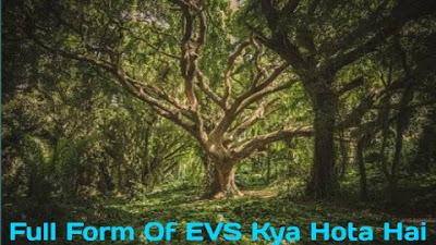 EVS Full Form - What Is The Full Form Of EVS In School - EVS Ka Full Form क्या होता है?