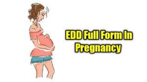 Edd full form in medical Term In Hindi And In Pregnancy में क्या होता है पुरी जानकारी?